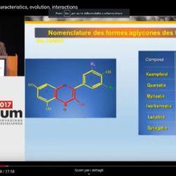 I flavonoli del vino: caratteristiche, evoluzione, interazione - Presentazione di Michel Moutounet INRA Pech Rouge - Enoforum 2017