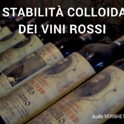 Stabilità colloidale dei vini rossi - Webinar organizzato da Vinidea nel 2017 - Docente : Aude Vernhet – INRA