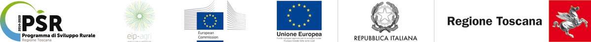 PSR, European logo